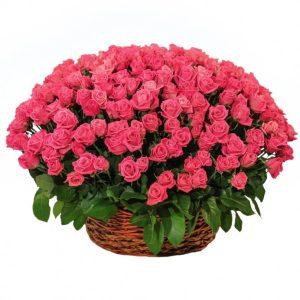 Корзина из живых цветов №11