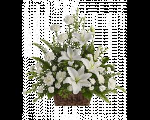 Корзина из живых цветов №10